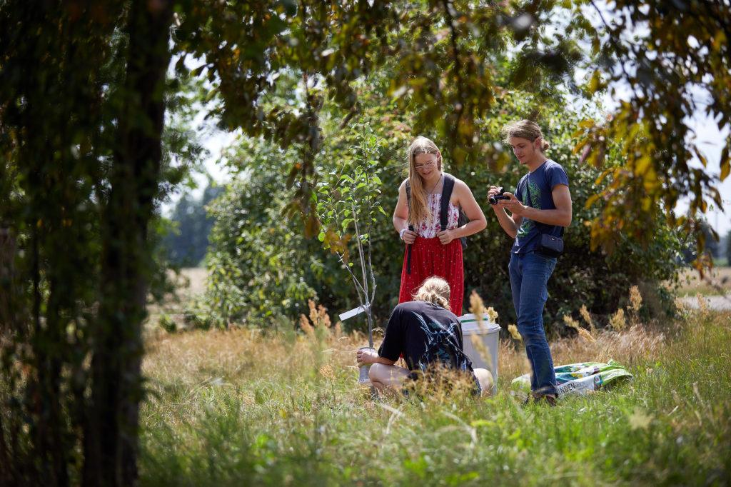 Influence Your Future: Eindrücke vom Jugendcamp 2020 im Oderbruch.